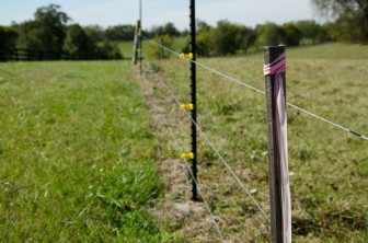 Hot pink ribbons tied to fences, trees and wooden stakes are a sign that the pipeline developers have surveyed land for the potential route.